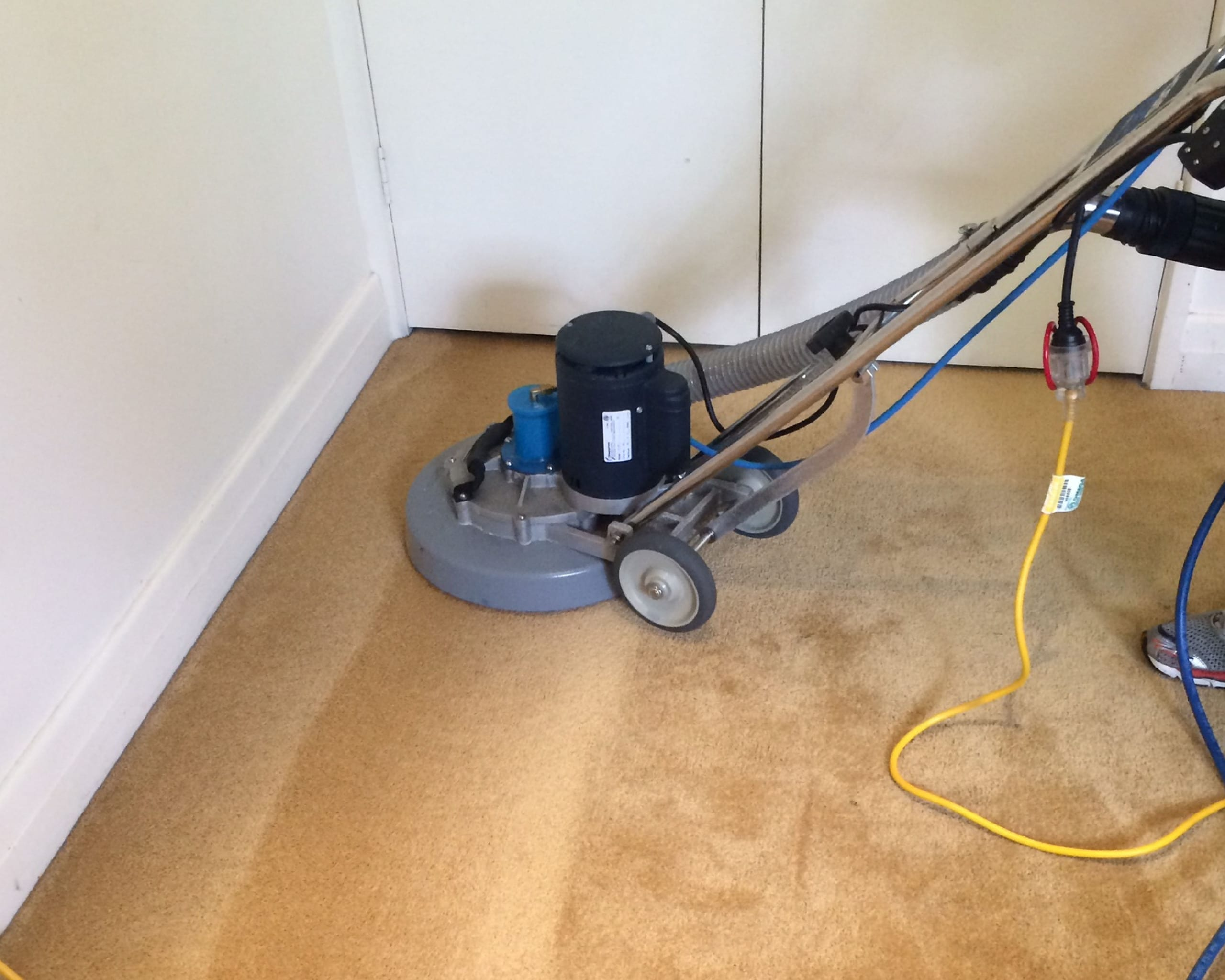 Carpet Cleaning Melbourne with a rotary steam cleaning wand
